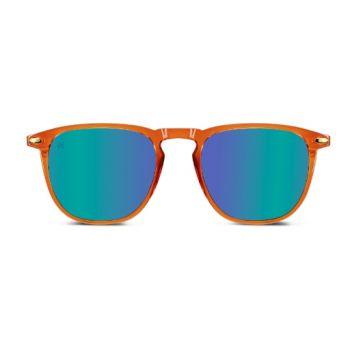 Nooz Dino Bronze Sunglasses - Size 49
