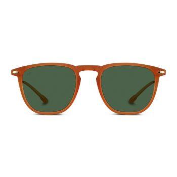 Nooz Dino Honey Sunglasses - Size 49
